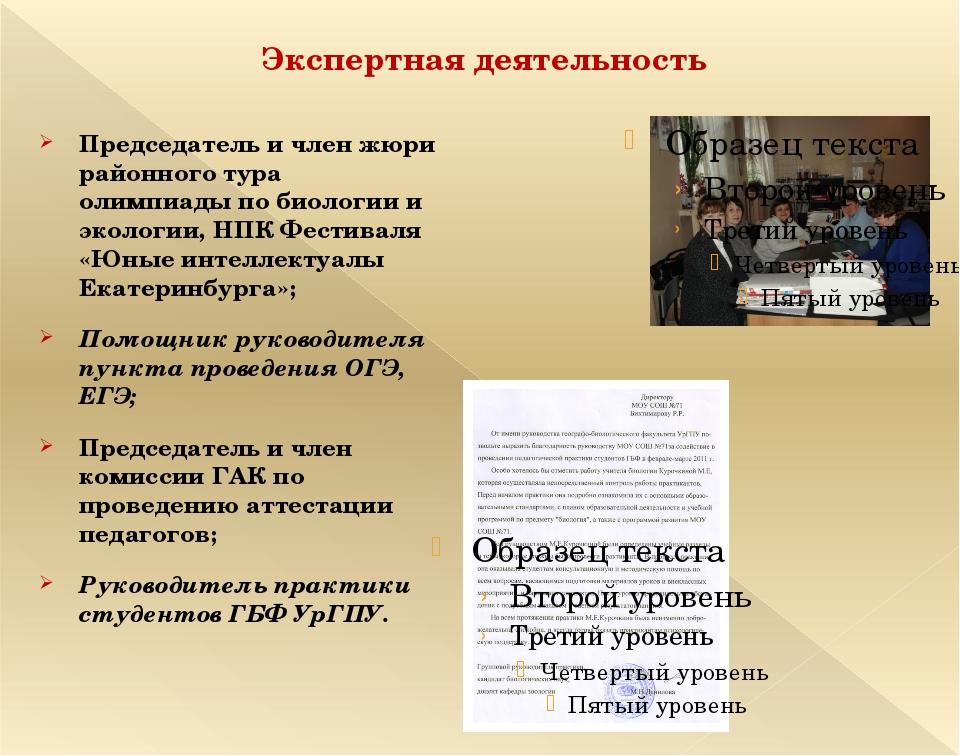 Экспертная деятельность Председатель и член жюри районного тура олимпиады по...