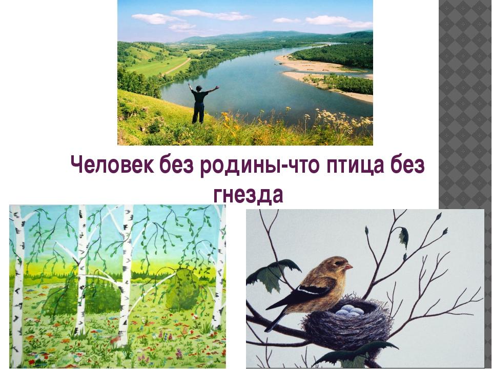 Человек без родины-что птица без гнезда