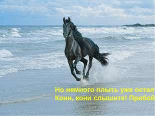 Но немного плыть уже осталось Кони, кони слышите! Прибой!