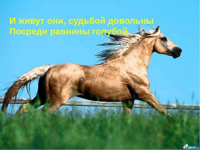 И живут они, судьбой довольны Посреди равнины голубой.