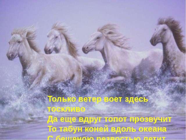 Только ветер воет здесь тоскливо Да еще вдруг топот прозвучит То табун коней...