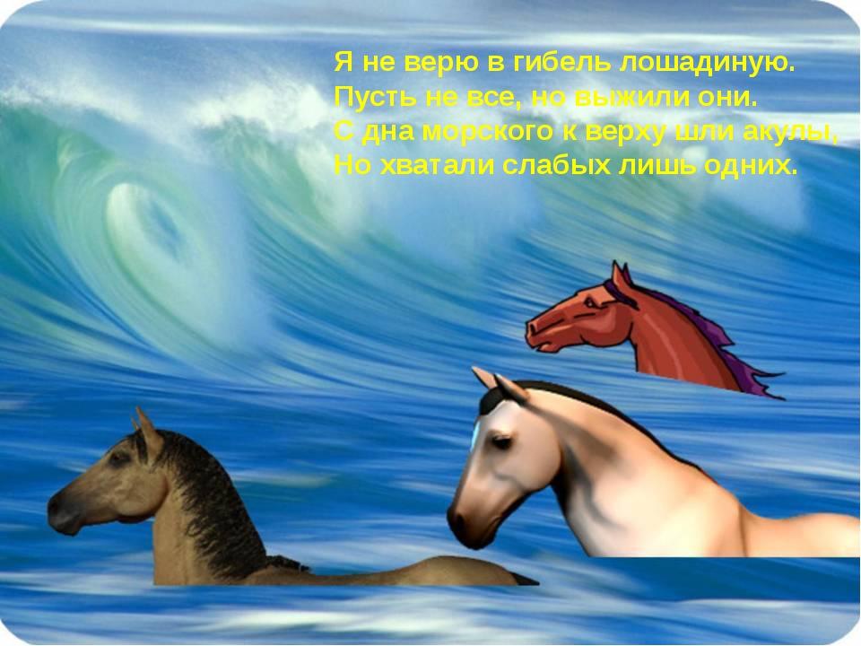 Я не верю в гибель лошадиную. Пусть не все, но выжили они. С дна морского к в...