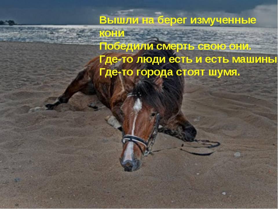 Вышли на берег измученные кони Победили смерть свою они. Где-то люди есть и е...