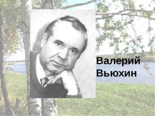 Валерий Вьюхин