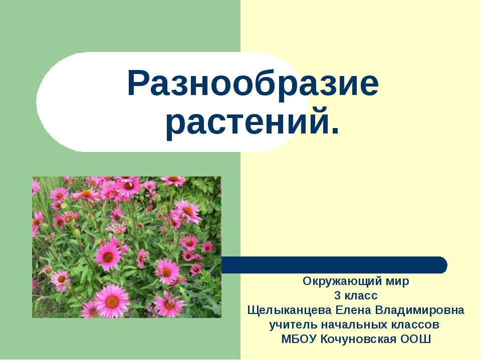 Разнообразие растений. Окружающий мир 3 класс Щелыканцева Елена Владимировна...