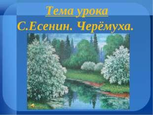 Тема урока С.Есенин. Черёмуха.