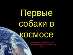 Первые собаки в космосе Выполнил: Селянинов Д.В Руководитель: Фетисова Т.Д 20