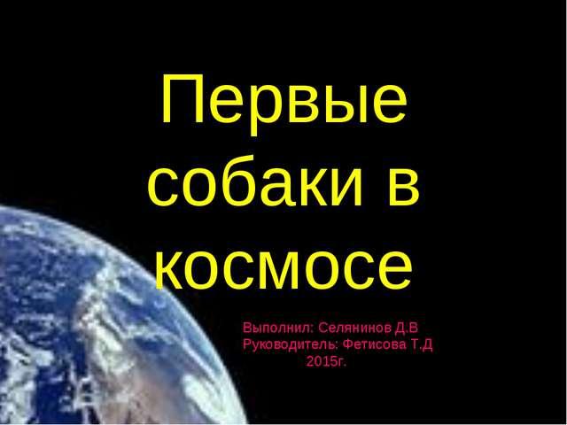 Первые собаки в космосе Выполнил: Селянинов Д.В Руководитель: Фетисова Т.Д 20...