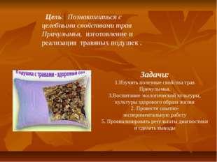 Цель: Познакомиться с целебными свойствами трав Причулымья, изготовление и р