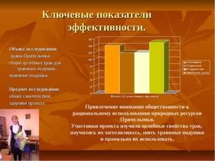 Ключевые показатели эффективности. Объект исследования: травы Причулымья, сбо