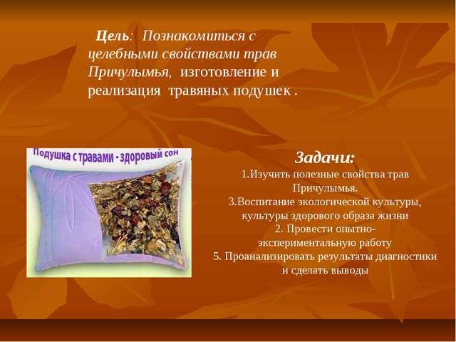 Цель: Познакомиться с целебными свойствами трав Причулымья, изготовление и р...