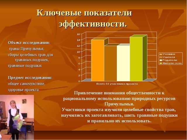 Ключевые показатели эффективности. Объект исследования: травы Причулымья, сбо...