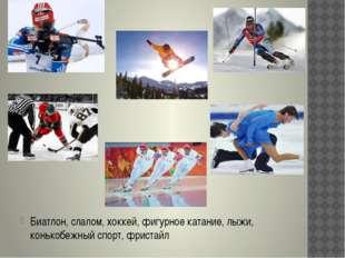 Биатлон, слалом, хоккей, фигурное катание, лыжи, конькобежный спорт, фристайл