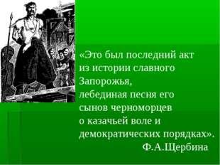 «Это был последний акт из истории славного Запорожья, лебединая песня его сы