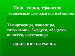 Пши, уорки, тфокотли - социальные слои адыгского общества Темиргоевцы, жанеев