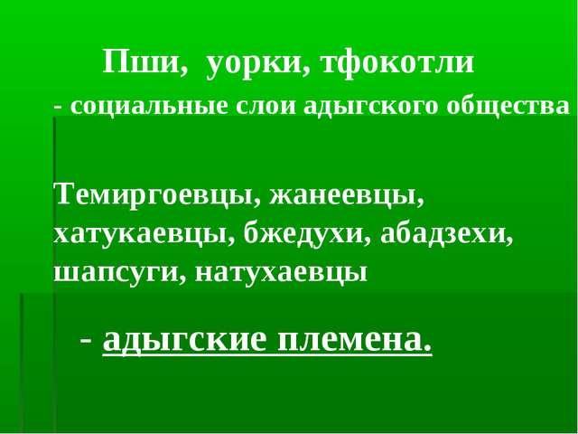 Пши, уорки, тфокотли - социальные слои адыгского общества Темиргоевцы, жанеев...