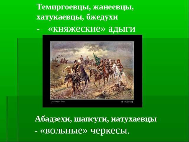 Темиргоевцы, жанеевцы, хатукаевцы, бжедухи - «княжеские» адыги Абадзехи, шапс...