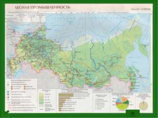 Северо-Европейская база Лесная промышленностьСеверо-Европейской базыимеют ш