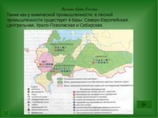 Практикум №2 Назовите лесные базы России Дайте характеристику одной из них по