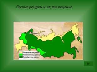 Назовите 3 стадии лесной промышленности Архангельск называют «российской лесо