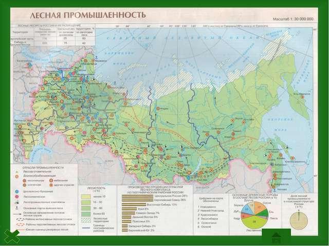 Северо-Европейская база Лесная промышленностьСеверо-Европейской базыимеют ш...
