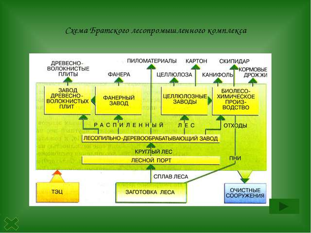 Центральная база Центральная база- запасы древесины значительны только в се...