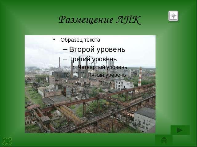 Пожар Промышленная зона среди леса Байкальский комбинат Загрязнение атмосферы