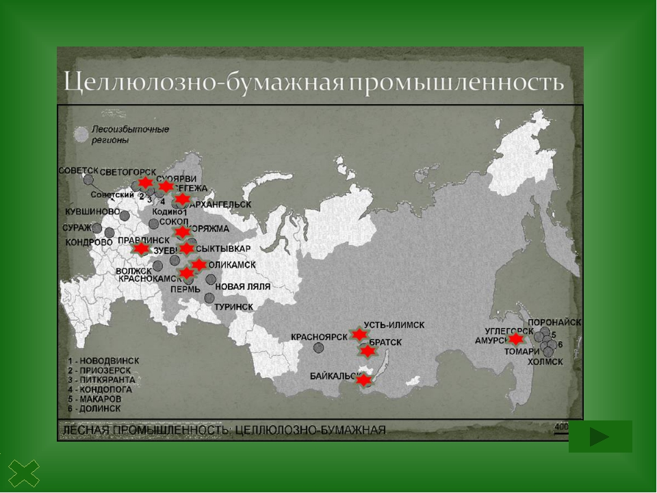 Лесохимическая промышленность - производство этилового спирта, скипидара,...