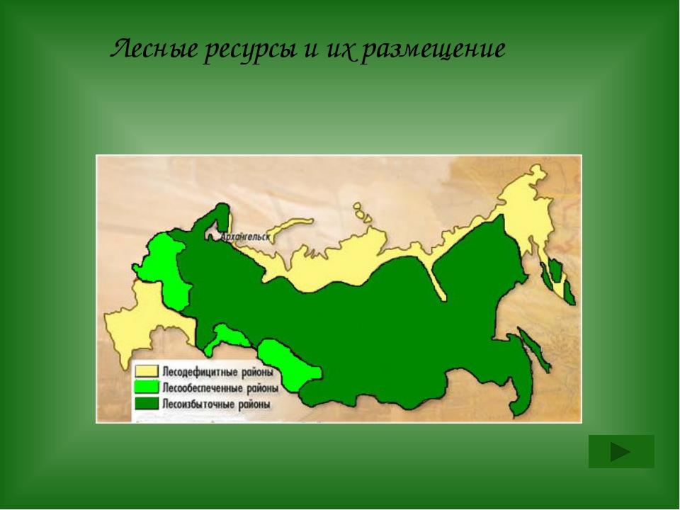 Назовите 3 стадии лесной промышленности Архангельск называют «российской лесо...