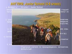 АНГЛИЯ: Junior School (4-6 класс) 5. Учителя Один учитель по основным предме