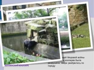 Во время Второй Мировой войны большая часть зоопарка была разрушена, звери ра