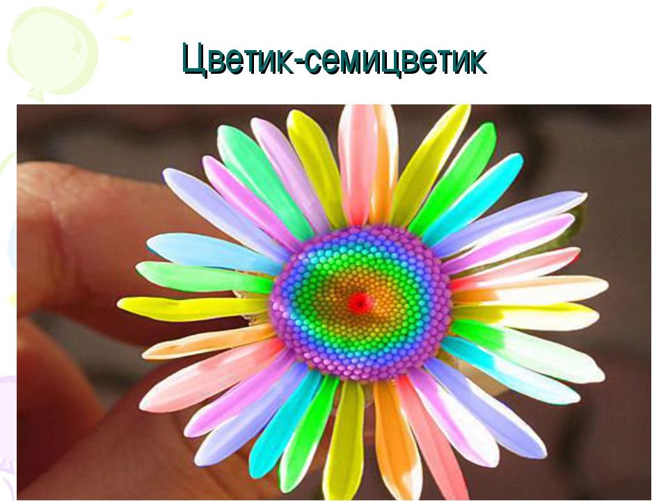 Цветок семицветик