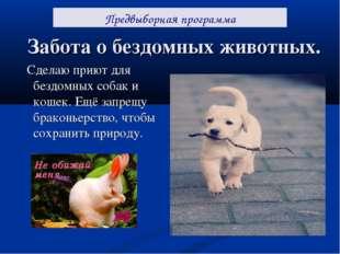Забота о бездомных животных. Сделаю приют для бездомных собак и кошек. Ещё за