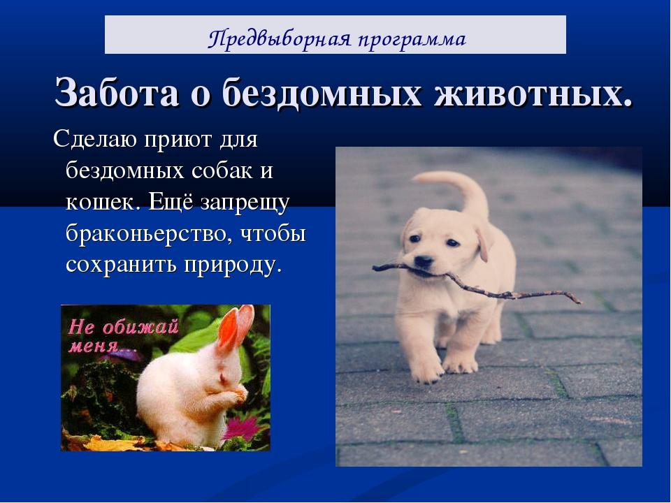 Забота о бездомных животных. Сделаю приют для бездомных собак и кошек. Ещё за...