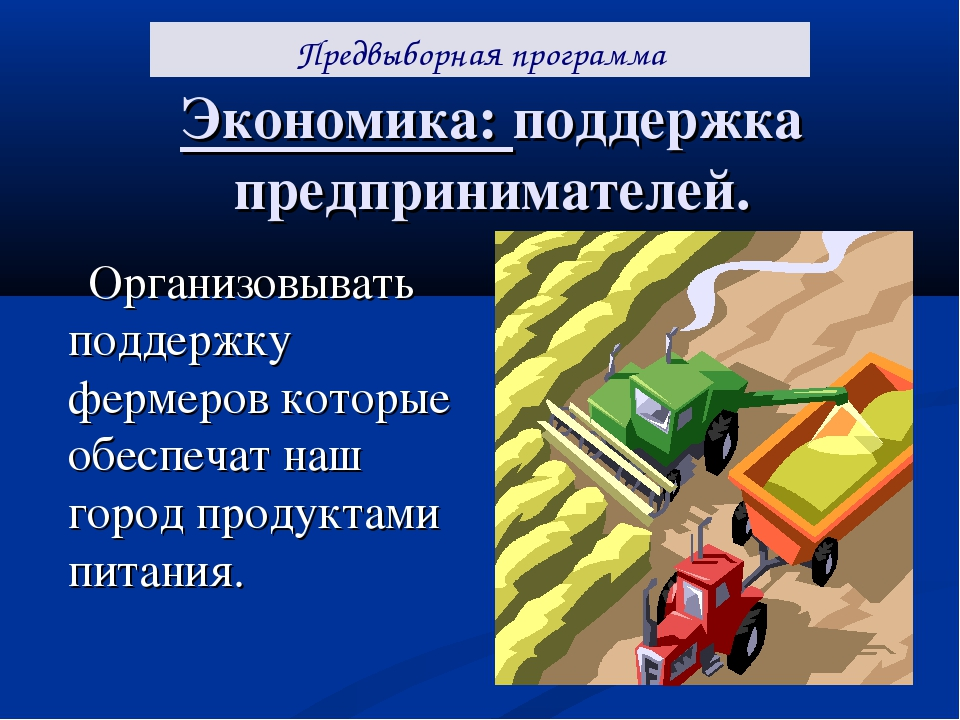 Экономика: поддержка предпринимателей. Организовывать поддержку фермеров кото...