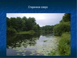 Старичное озеро