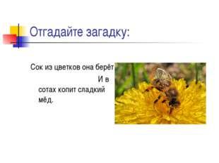 Отгадайте загадку: Сок из цветков она берёт И в сотах копит сладкий мёд.