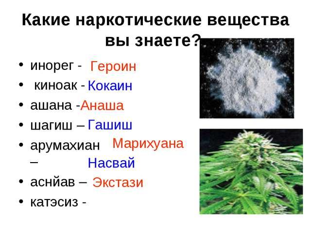 Какие наркотические вещества вы знаете? инорег - киноак - ашана - шагиш – ару...