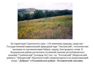 На территории Саратовского края - 124 памятника природы, среди них - Государс