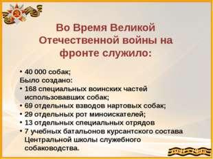 Во Время Великой Отечественной войны на фронте служило: 40000 собак; Было со