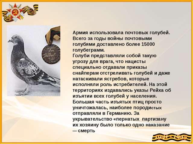 Армия использовала почтовых голубей. Всего за годы войны почтовыми голубями...