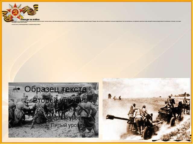 Лошади на войне Несмотря на то, что Вторую мировую войну называли войной мот...