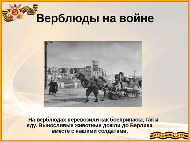 Верблюды на войне На верблюдах перевозили как боеприпасы, так и еду. Вынослив...