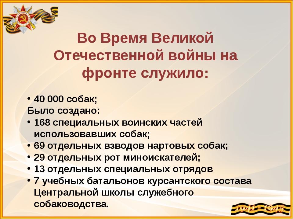 Во Время Великой Отечественной войны на фронте служило: 40000 собак; Было со...