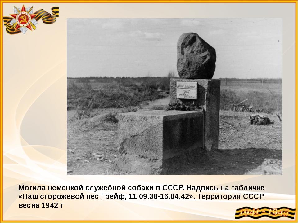 Могила немецкой служебной собаки в СССР. Надпись на табличке «Наш сторожевой...