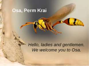 Osa, Perm Krai Hello, ladies and gentlemen. We welcome you to Osa.