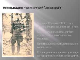 Мой прадедушка: Норкин Алексей Александрович Родился 17 марта 1923 года в дер
