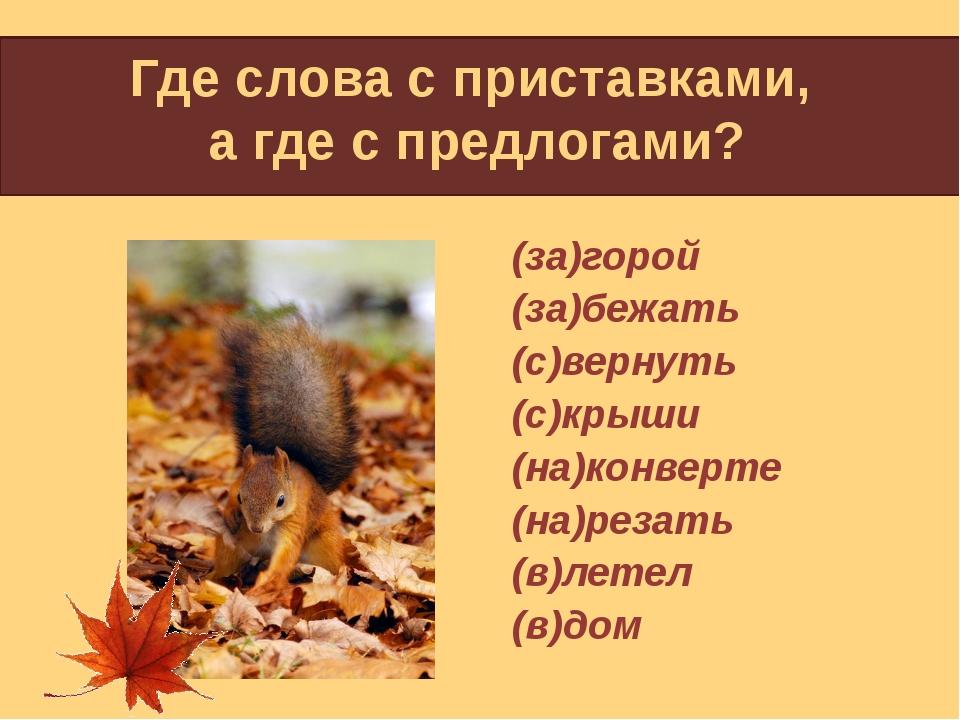 Где слова с приставками, а где с предлогами? (за)горой (за)бежать (с)вернуть...
