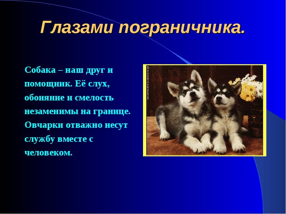Глазами пограничника. Собака – наш друг и помощник. Её слух, обоняние и смело...