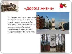 «Дорога жизни» От Ржевки до Ладожского озера выстроились вдоль асфальтовой ле